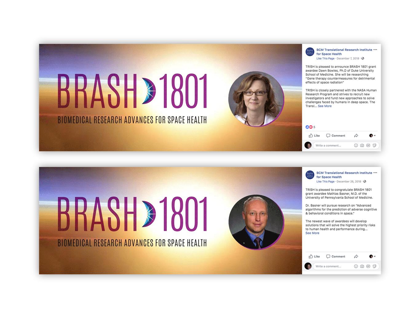 Interactive- TRISH