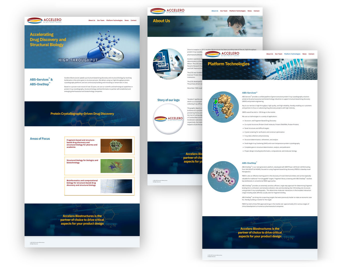 Website- Accelero Biostructures
